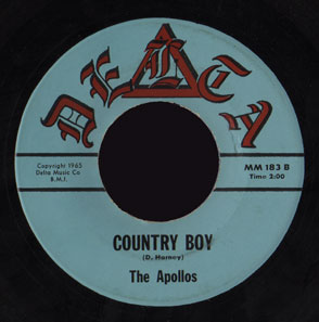 Apollos Delta 45 Country Boy