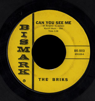 Briks Bismark 45 Can You See Me