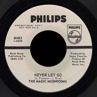 The Magic Mushrooms Philips 45 Never Let Go