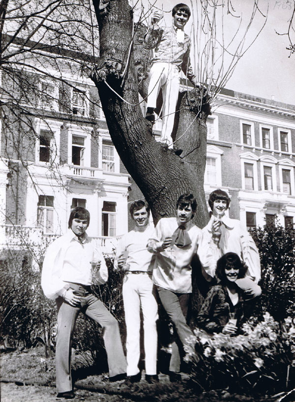 The Treetops, 1968