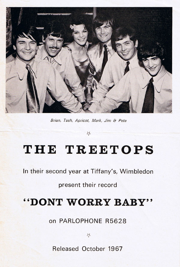 "The Treetops promo for ""Don't Worry Baby"""