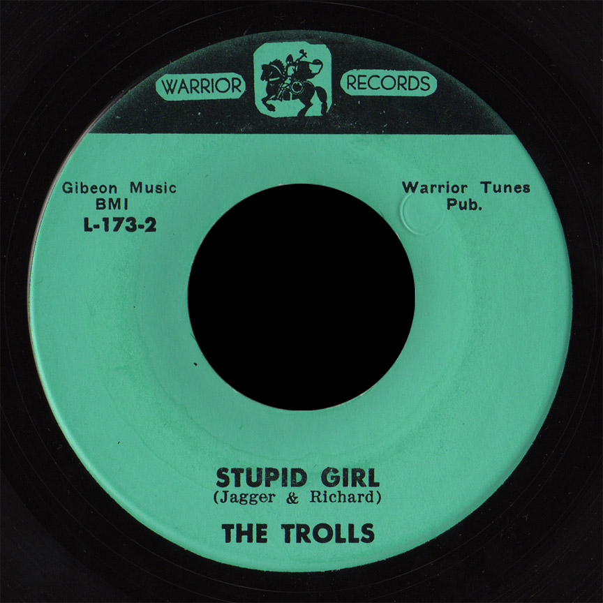 The Trolls Warrior 45 Stupid Girl