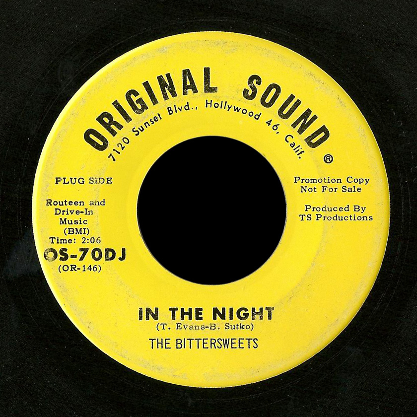 Bittersweets Original Sound 45 In the Night