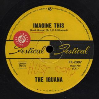 Iguana Festival 45 Imagine This