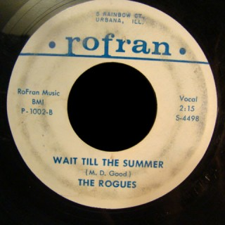 Rogues Rofran 45 Wait Till the Summer