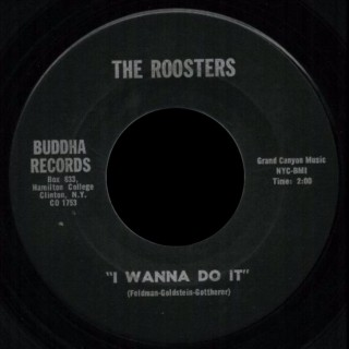 Roosters Buddha 45 I Wanna Do It