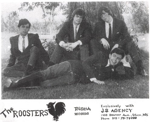 The Roosters Photo 2