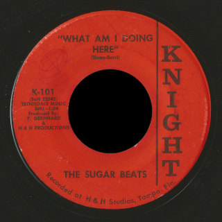 Sugar Beats Knight 45 What Am I Doing Here