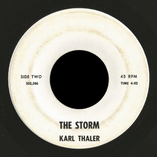 Karl Thaler 45 The Storm