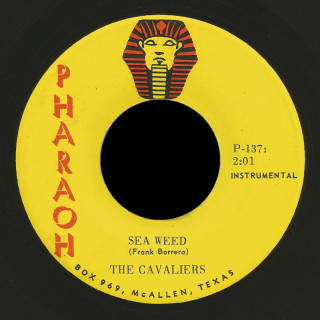 The Cavaliers Pharaoh 45 Sea Weed
