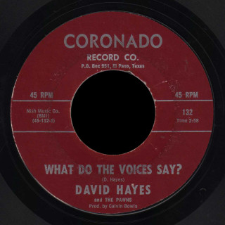 David Hayes and the Pawns Coronado 45 What Do the Voices Say