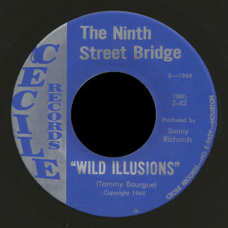 The Ninth Street Bridge Cecile 45 Wild Illusions