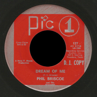 Phil Briscoe And The Sessions Pic 1 45 Dream Of Me