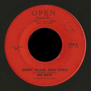 The Myst Open 45 Coney Island Wild Child
