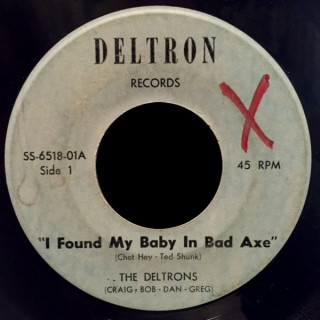 The Deltrons Deltron 45 I Found My Baby In Bad Axe
