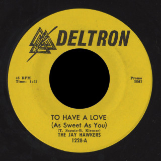 The Jay Hawkers Deltron 45 To Have A Love (As Sweet As You)