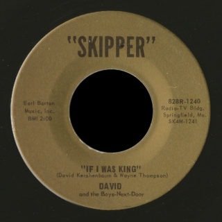 David And The Boys-Next-Door Skipper 45 If I Was King